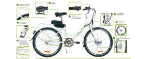 biciclette-elettriche-858x350_c